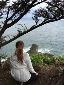 Cape Falcon Trail OR