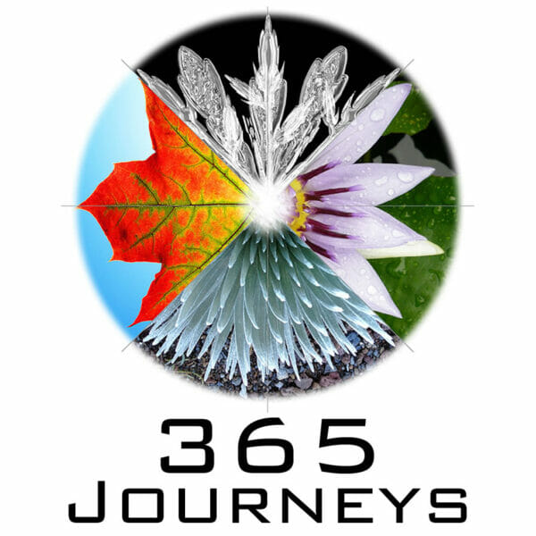 365 Journeys Shamanism For Every Day Email Delivery