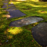 Moss with a path of grey stones. Learn more about healing art, paintings, creative expression of soul and creating art for spiritual healing