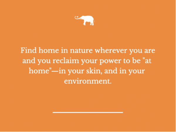 Elephant Journal nature quote Claiming Your Spiritual Homestead