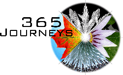 365-journeys-shamanism-for-every-day-daily-journey-program